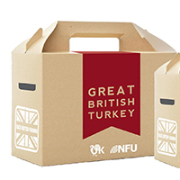 XL Turkey Box