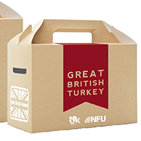 Small Turkey Box